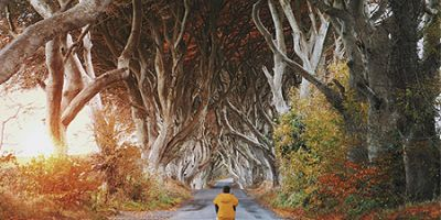 Man sitting on a road between an avenue of dark trees and Hedges, Stranocum, Ballymoney, Northern Ireland.