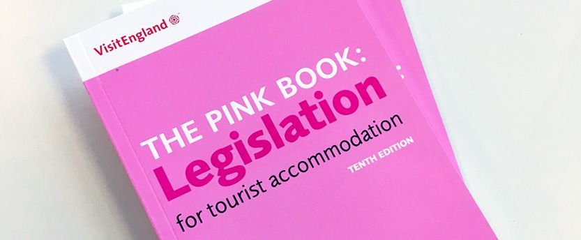 pink book 10th edition