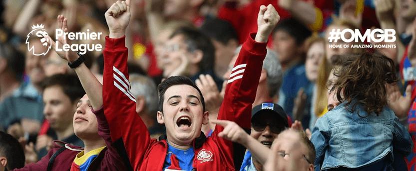 Premier League fan at a match