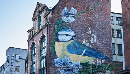 Mural of Blue Tit on brick wall of 47 Newton Street, Manchester, England, UK.