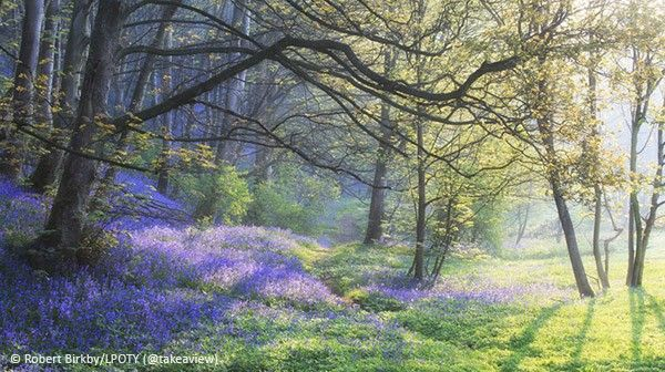 Calderdale West Yorkshire Landscape Photographer of the Year
