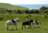 three people ride horses in a field on top of a cliff overlooking the sea