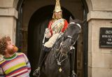 A man posing with Horseguards