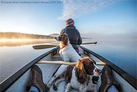 The back of a woman rows a canal boat, with two dogs sitting behind her. Copyright Graham Niven