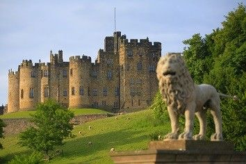 A statue of a lion stands in the gardens of Alnwick castle