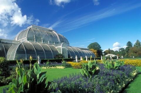 Golden Jubilee - Palm House at Kew Gardens, Kew, London, England