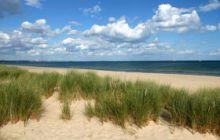 Studland Beach sand dunes, Dorset