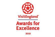 VE awards logo
