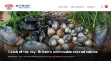 Screenshot of VisitBritain's Online Media Centre homepage