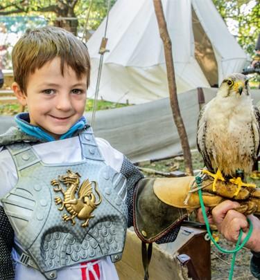 Young boy holding a hawk
